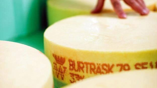 160104153533_sweedish_cheese4